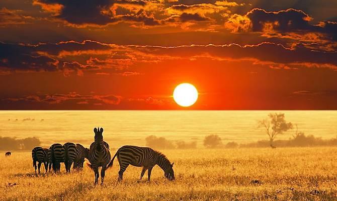 Kenya - Watamu