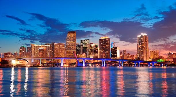 FLORIDA EXPERIENCE Mondo