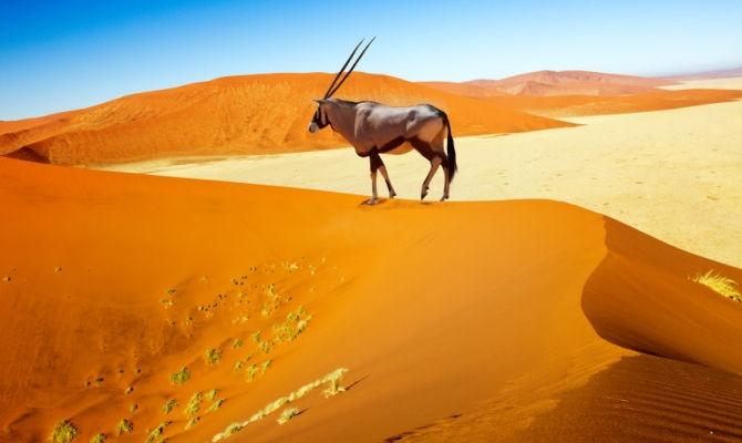 PAESAGGI DELLA NAMIBIA Mondo
