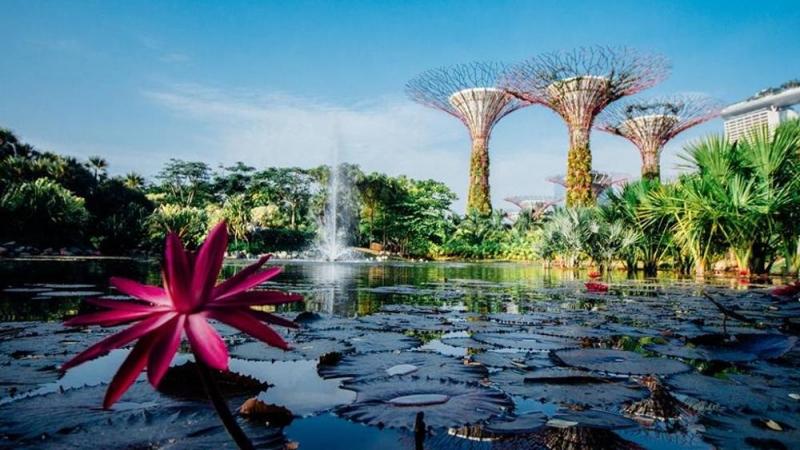SINGAPORE E BALI