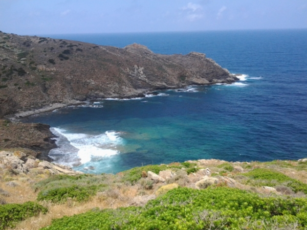 Speciale Asinara Sardegna