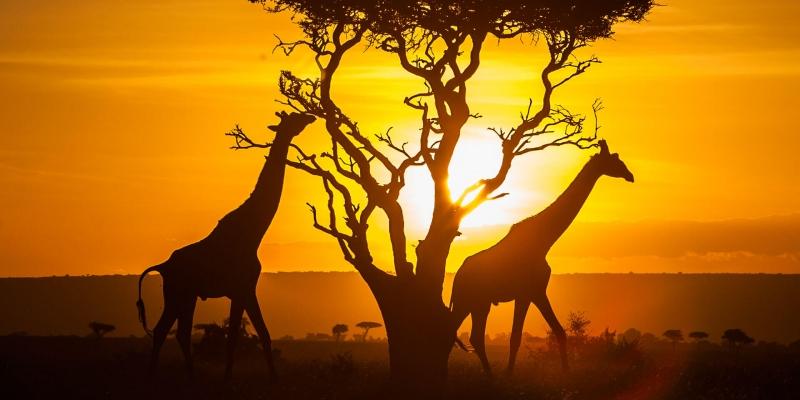 Idee Nozze Kenya Viaggi Nozze