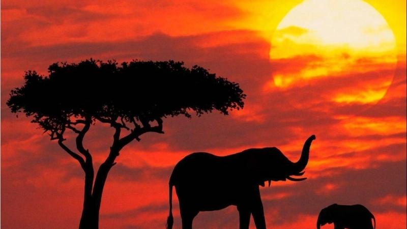Idee Nozze Romantico Sudafrica e Madagascar Viaggi Nozze