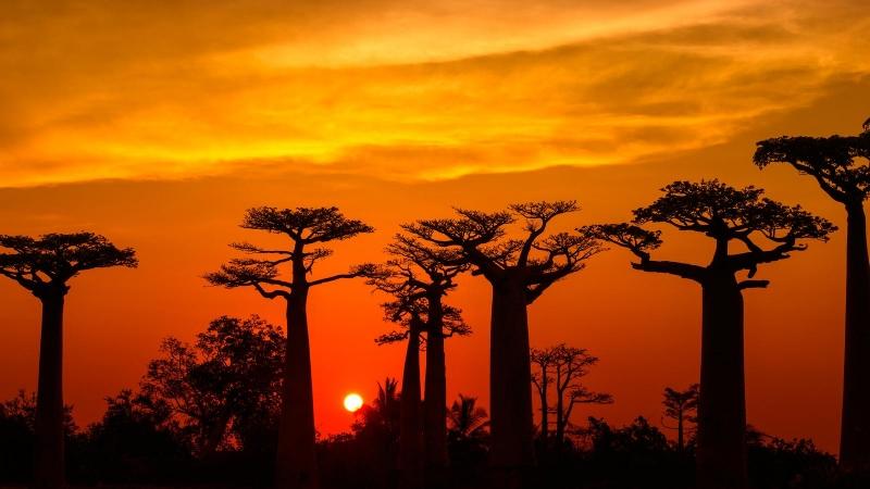 MADAGASCAR LE PERLE DEL NORD Mondo
